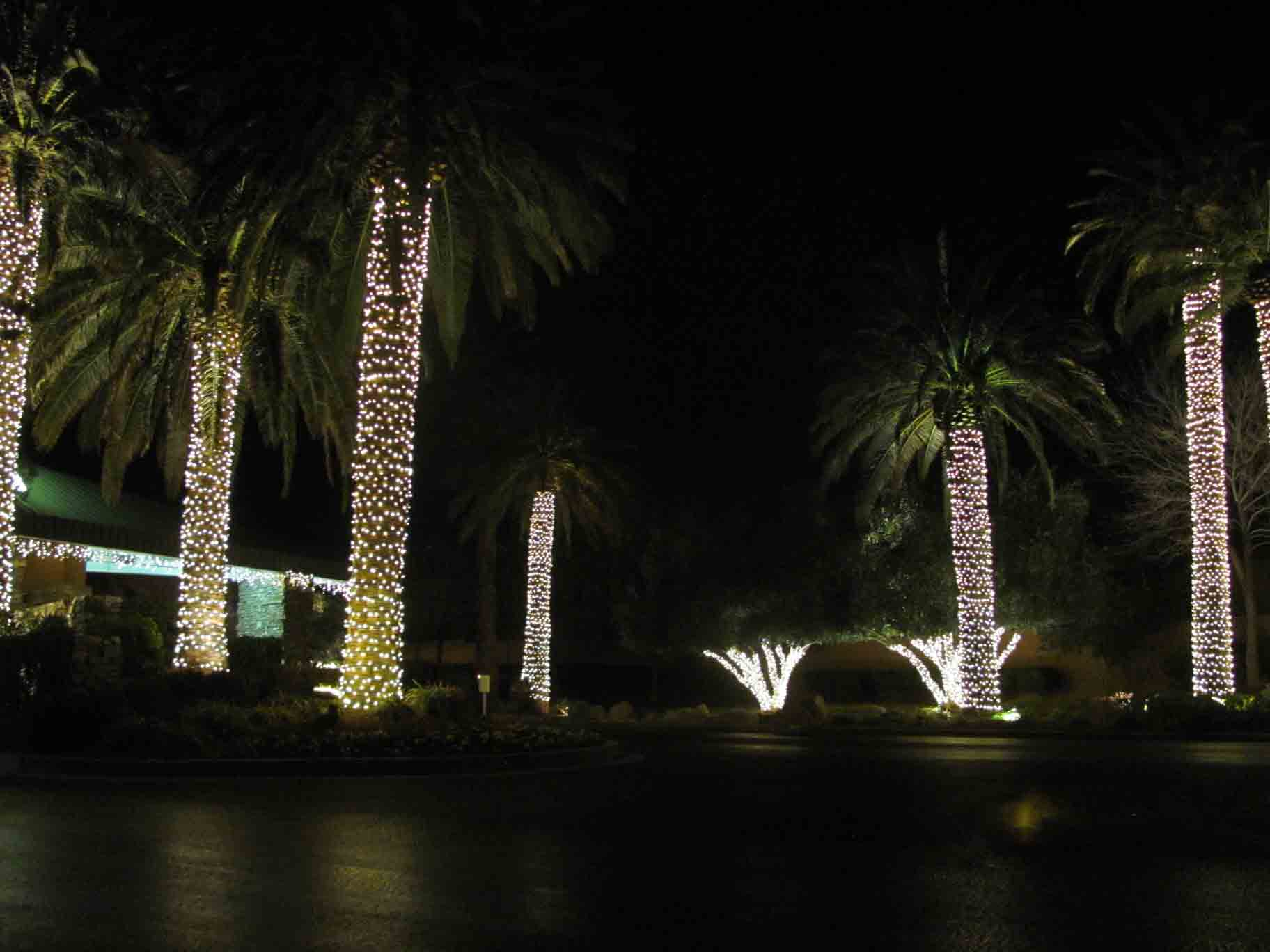 LED holiday lighting rental by Holiday Decorations in Las Vegas