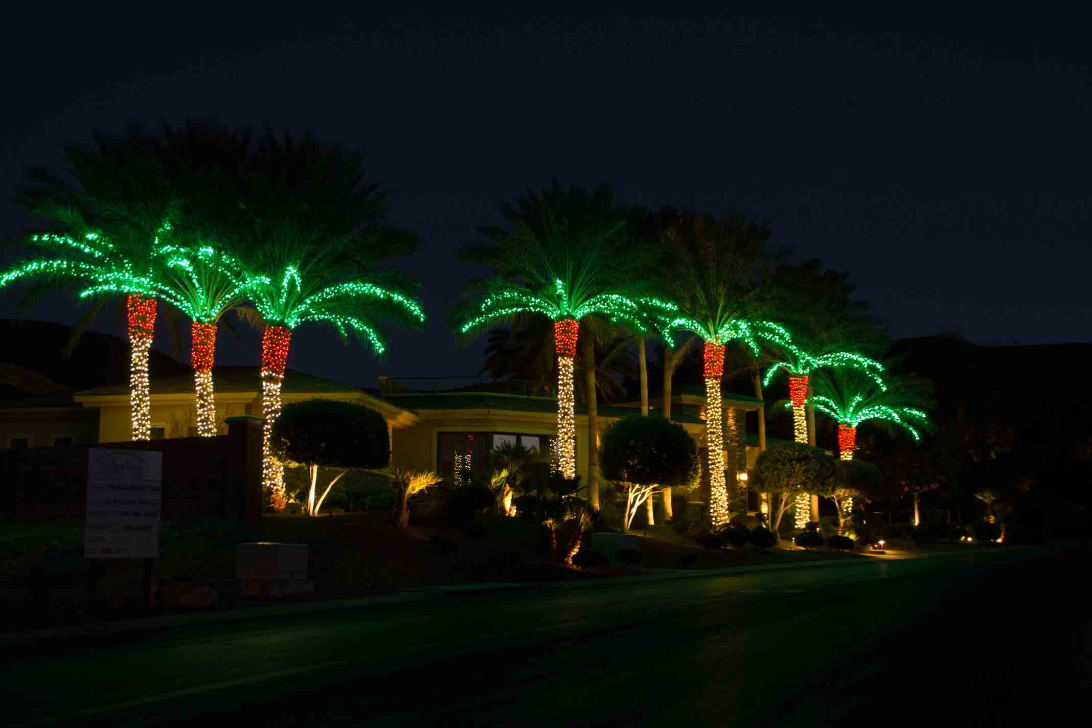 Christmas lights on tops of palms by Holiday Decorations in Las Vegas
