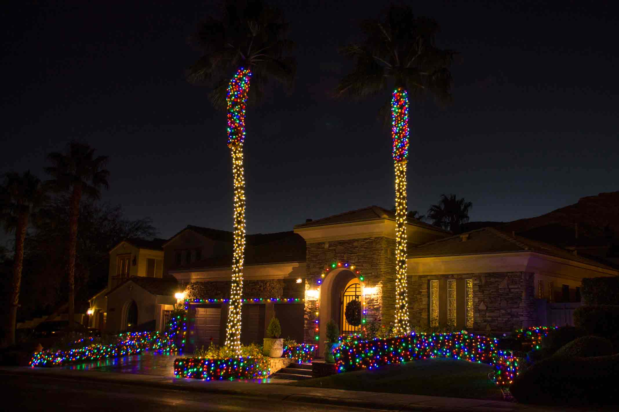 LED lights on palms by Holiday Decorations in Las Vegas