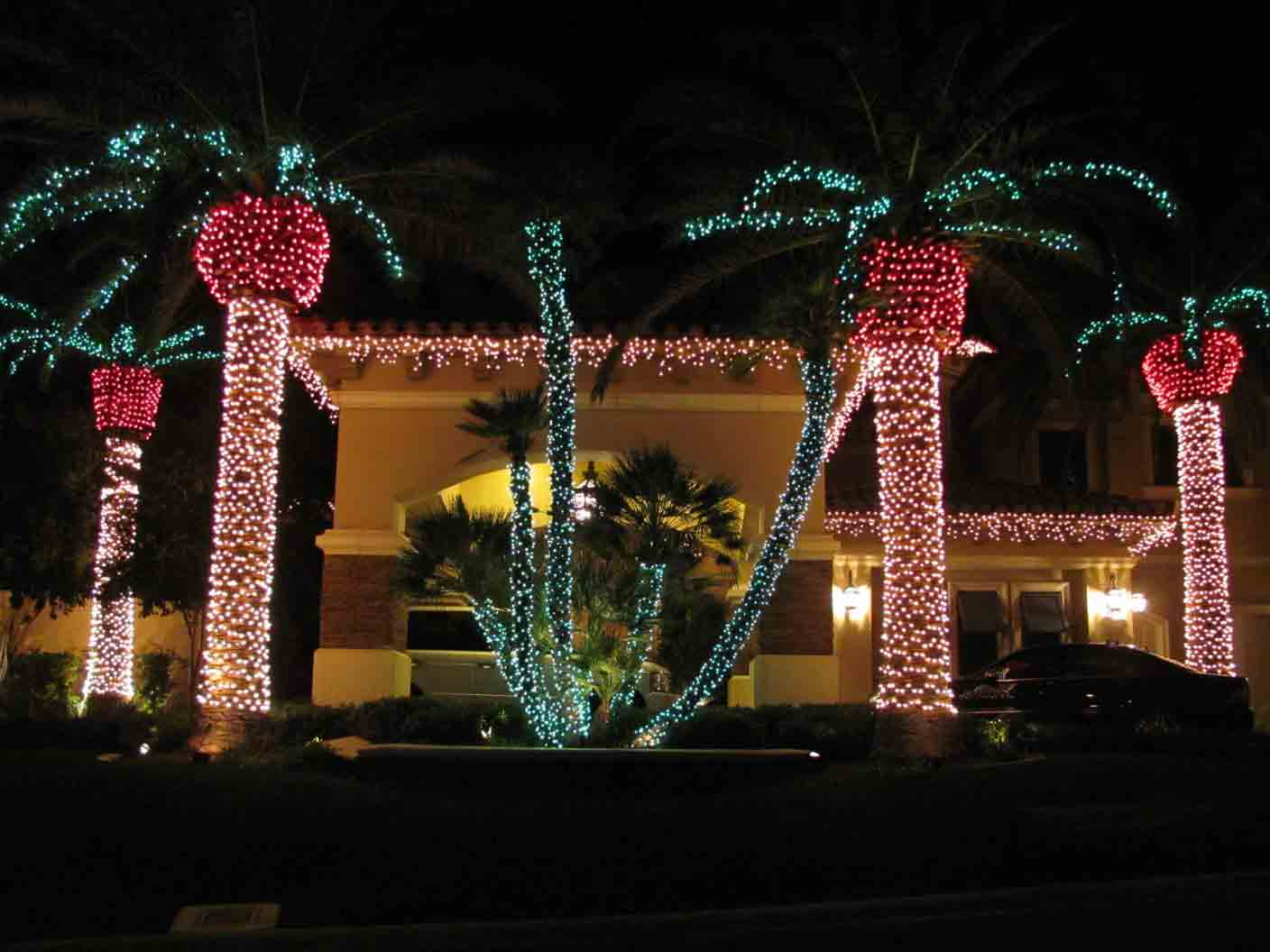 Palms fronds Christmas lights by Holiday Decorations in Las Vegas
