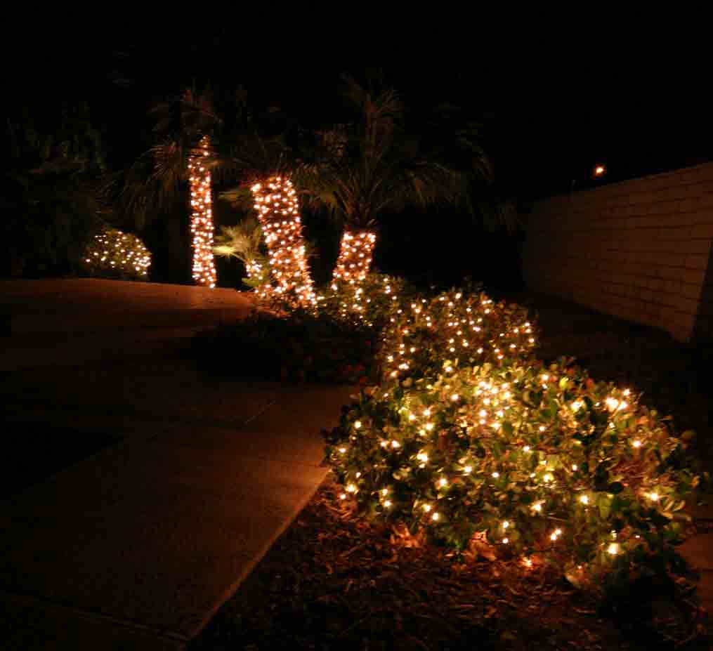 Christmas Lights on Bushes by Holiday Decorations in Las Vegas