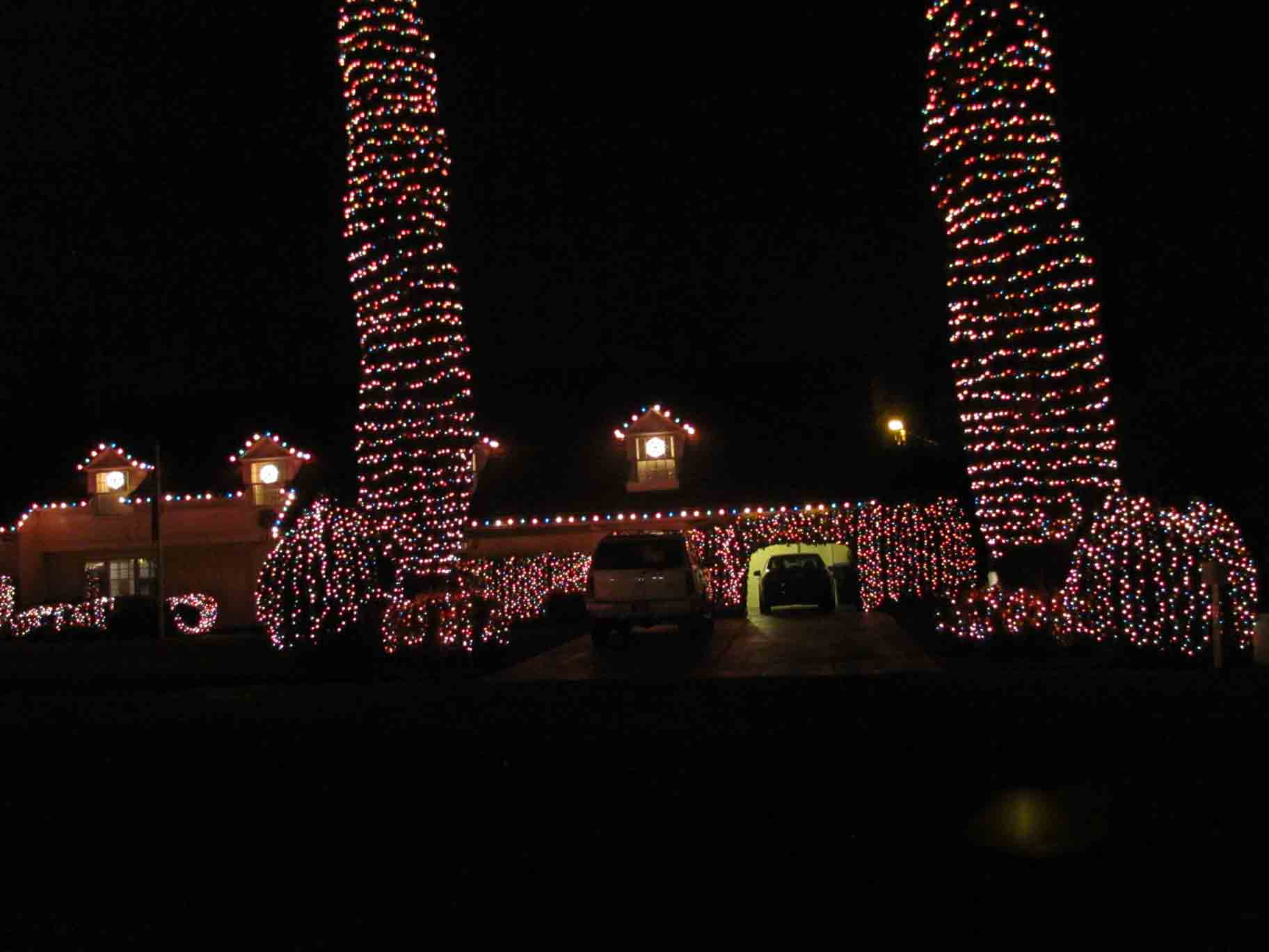 colored Christmas lights on Cypress trees by Holiday Decorations in Las Vegas