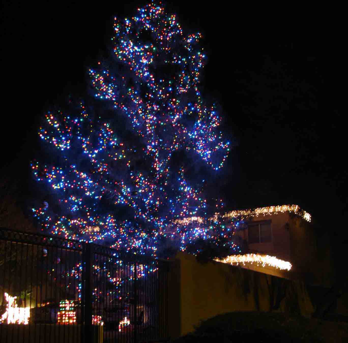 Pine tree decorated with LED lights by Holiday Decorations in Las Vegas