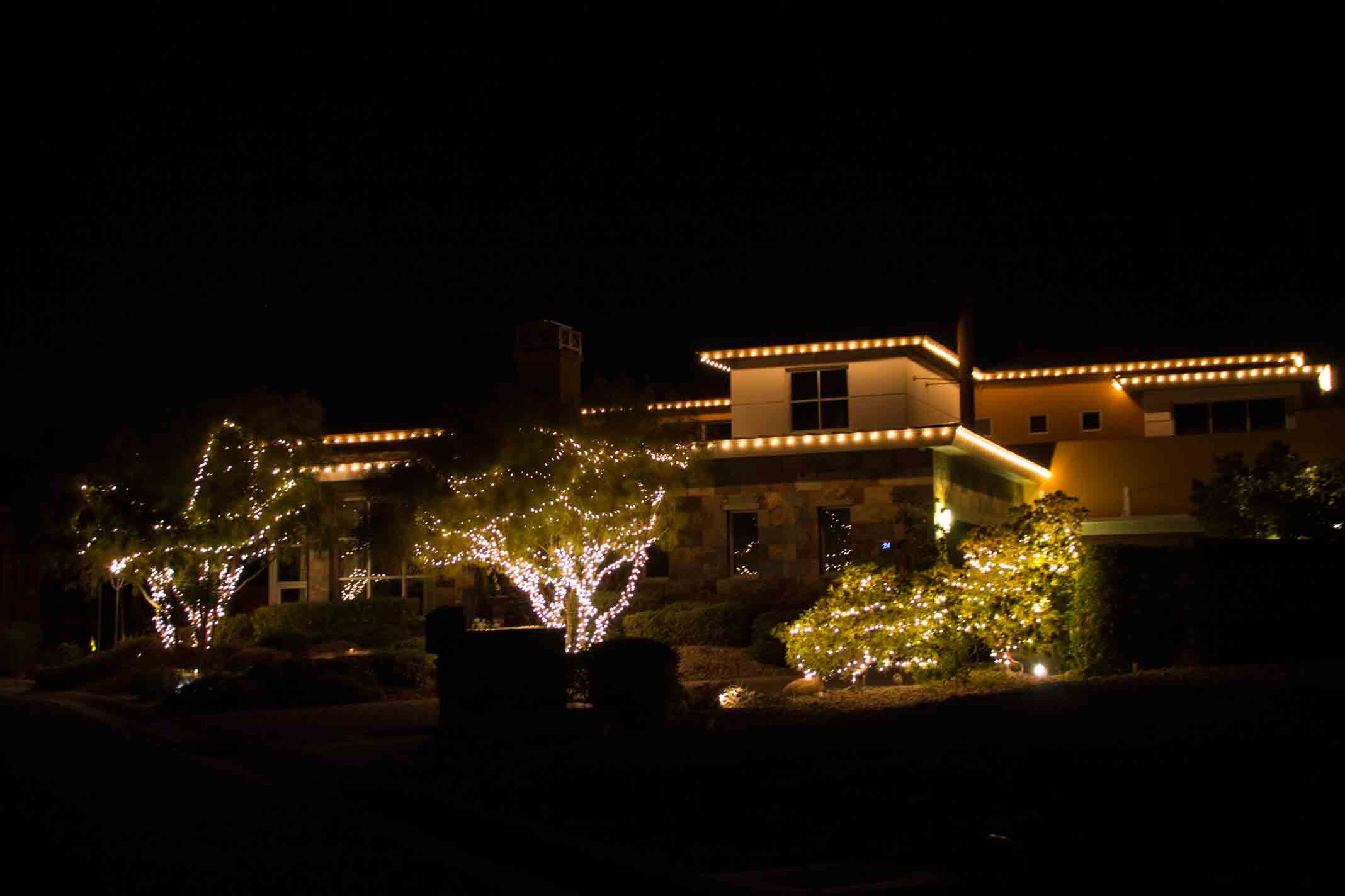 LED C-9 Christmas lights and trees by Holiday Decorations in Las Vegas