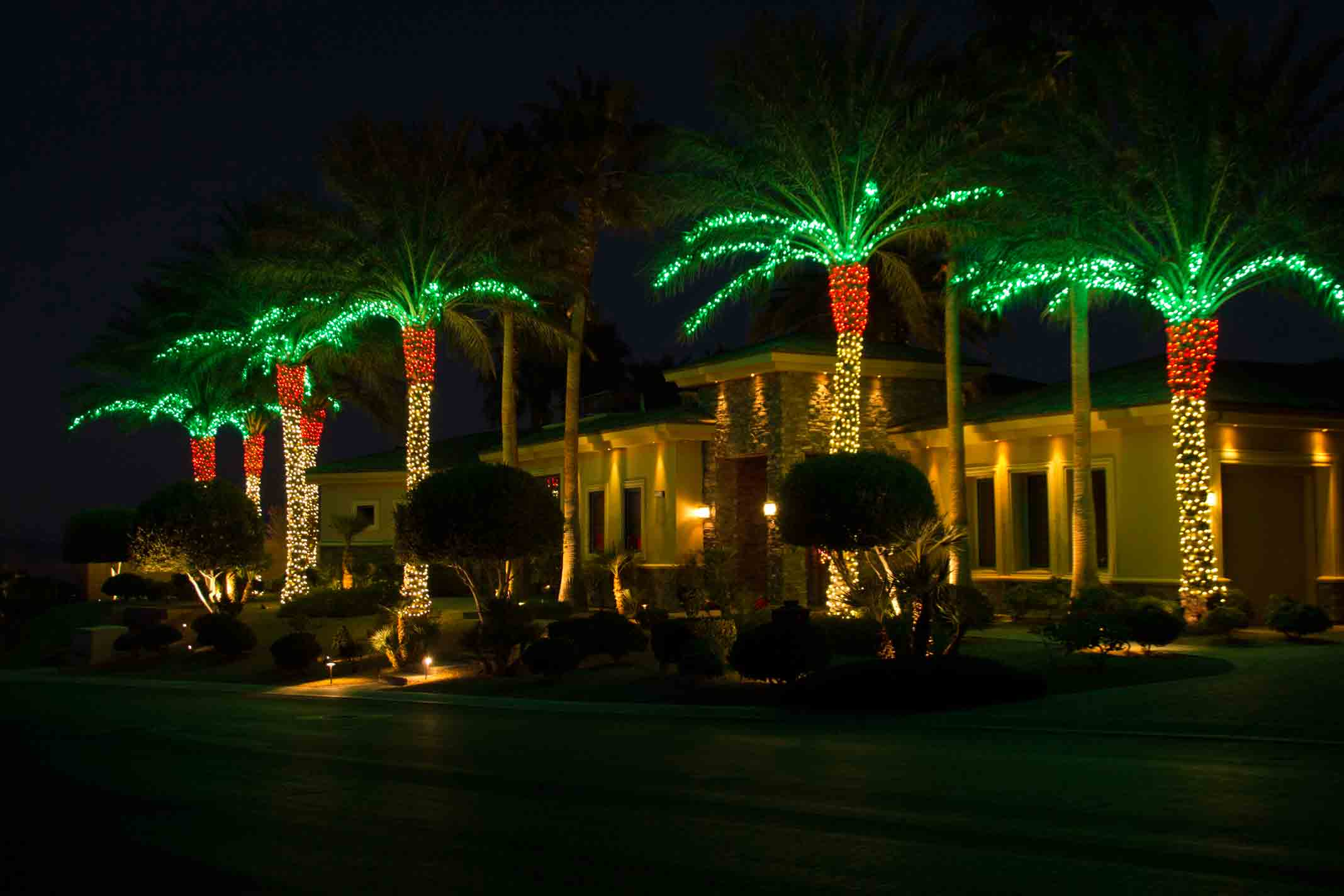 Residential holiday lighting on palm fronds by Holiday Decorations in Las Vegas